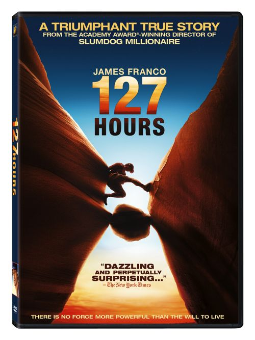127 Hours 2010 NTSC MULTi DVDR [FS]