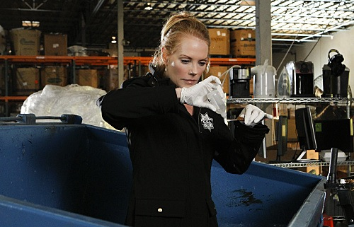 CSI Season 11 Episode 7 Bump & Grind Photos