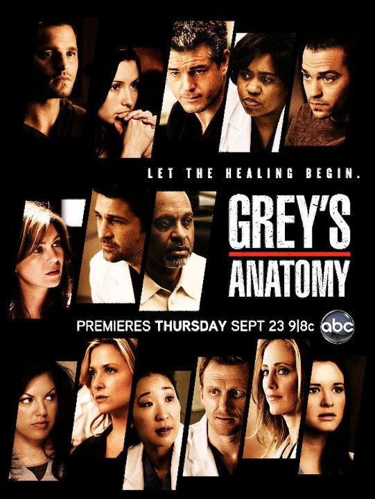 Grey's Anatomy Saison 8