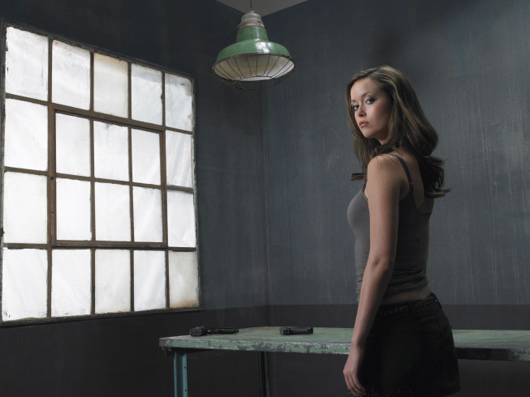 Terminator: Sarah Connor Chronicles Renewed For Second Season