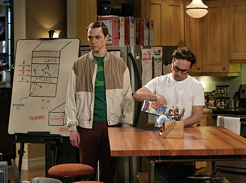 Sheldon and Leonard The Big Bang Theory