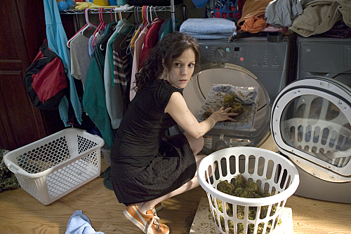 Weeds On Showtime Picture