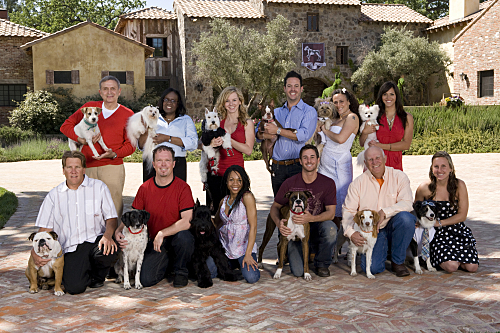 Greatest American Dog Cast Photo
