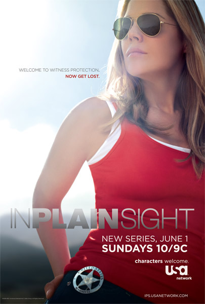 In Plain Sight Poster